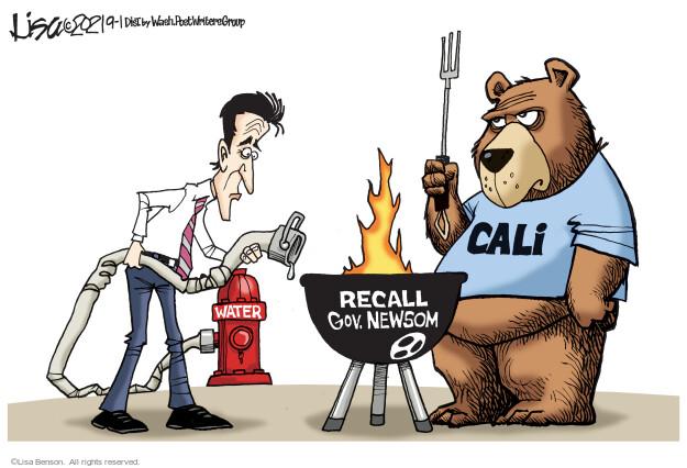 Lisa Benson  Lisa Benson's Editorial Cartoons 2021-09-01 state election