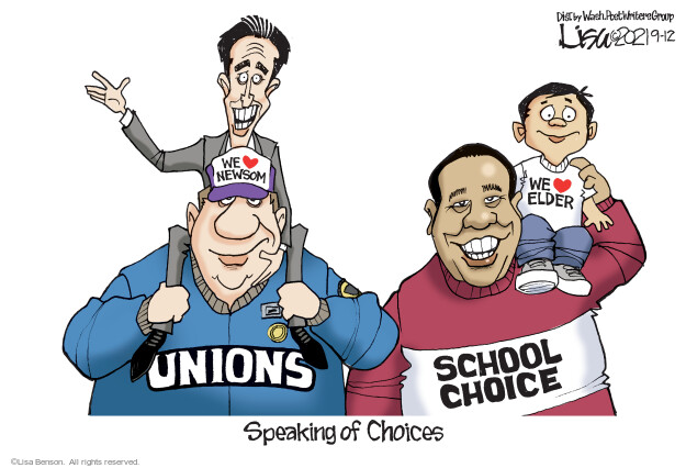 Lisa Benson  Lisa Benson's Editorial Cartoons 2021-09-12 state election