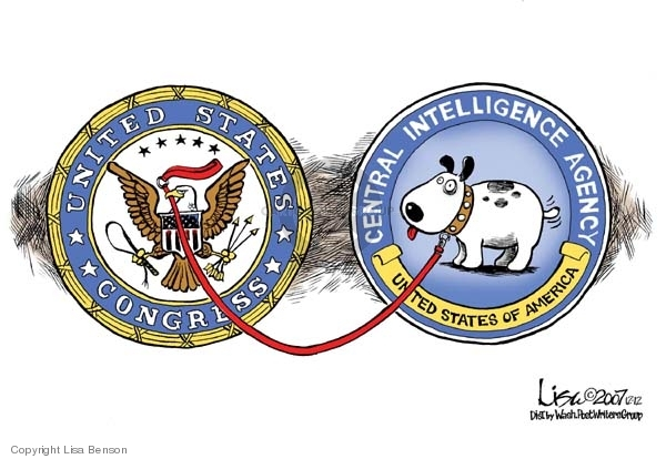 Cartoonist Lisa Benson  Lisa Benson's Editorial Cartoons 2007-12-12 CIA