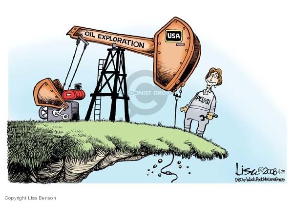 Cartoonist Lisa Benson  Lisa Benson's Editorial Cartoons 2008-04-29 House of Representatives