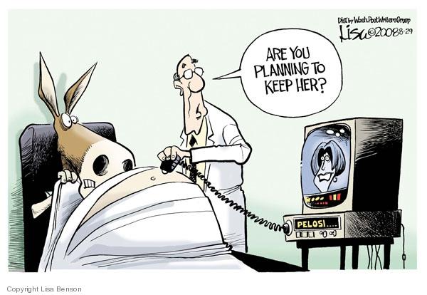 Cartoonist Lisa Benson  Lisa Benson's Editorial Cartoons 2008-08-29 House of Representatives