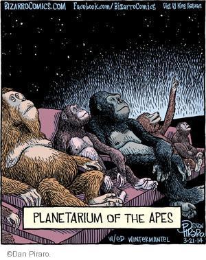 Planetarium of the Apes.