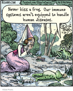 Never kiss a frog. Our immune systems arent equipped to handle human diseases.