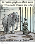 Cartoonist Dan Piraro  Bizarro 2009-11-03 animal welfare