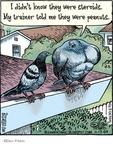 Cartoonist Dan Piraro  Bizarro 2009-11-17 steroids