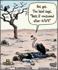 Cartoonist Dan Piraro  Bizarro 2011-04-06 bird food