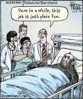 Cartoonist Dan Piraro  Bizarro 2012-11-03 career