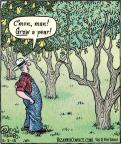 Cartoonist Dan Piraro  Bizarro 2013-05-02 fruit