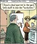 Cartoonist Dan Piraro  Bizarro 2014-11-26 dish
