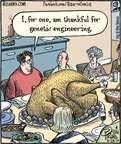 Cartoonist Dan Piraro  Bizarro 2014-11-28 turkey bird