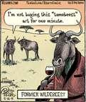 Cartoonist Dan Piraro  Bizarro 2015-05-16 buy