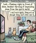 Cartoonist Dan Piraro  Bizarro 2015-07-31 cat