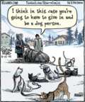 Cartoonist Dan Piraro  Bizarro 2015-11-13 cat