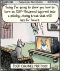 Comic Strip Dan Piraro  Bizarro 2017-06-20 television program