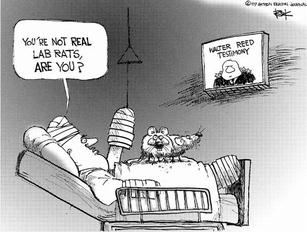 Cartoonist Chip Bok  Chip Bok's Editorial Cartoons 2007-03-06 veteran