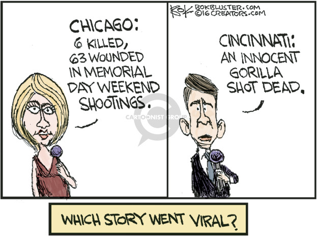Chicago: 6 killed, 63 wounded in Memorial Day weekend shootings. Cincinnati: An innocent gorilla shot dead. Which story went viral?