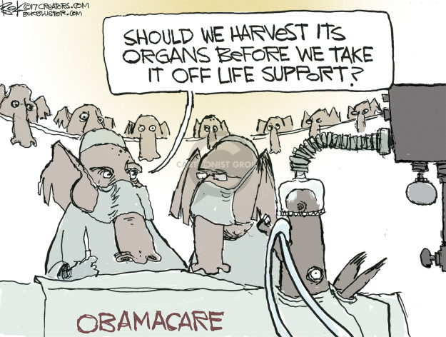Should we harvest its organs before we take it off life support? Obamacare.