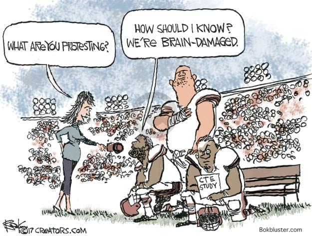Chip Bok  Chip Bok's Editorial Cartoons 2017-09-26 should