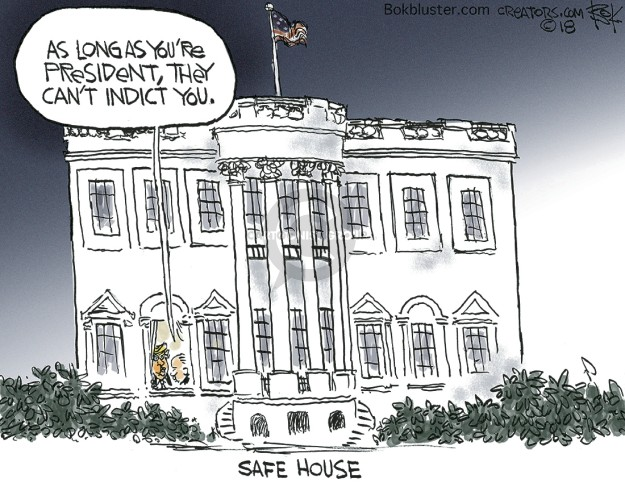 As long as youre president, they cant indict you. Safe House.