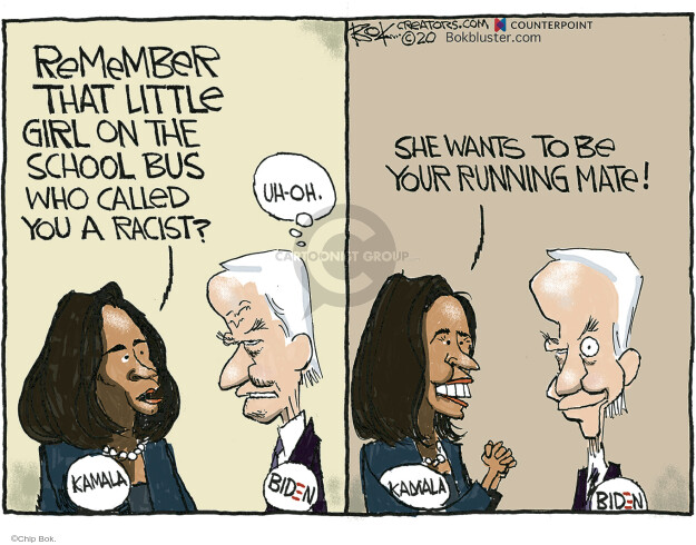 Chip Bok  Chip Bok's Editorial Cartoons 2020-05-01 democratic
