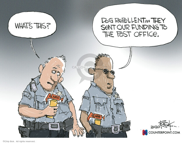 Chip Bok  Chip Bok's Editorial Cartoons 2020-08-26 enforcement