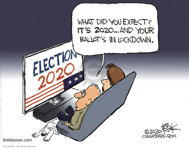 Chip Bok  Chip Bok's Editorial Cartoons 2020-11-05 chip