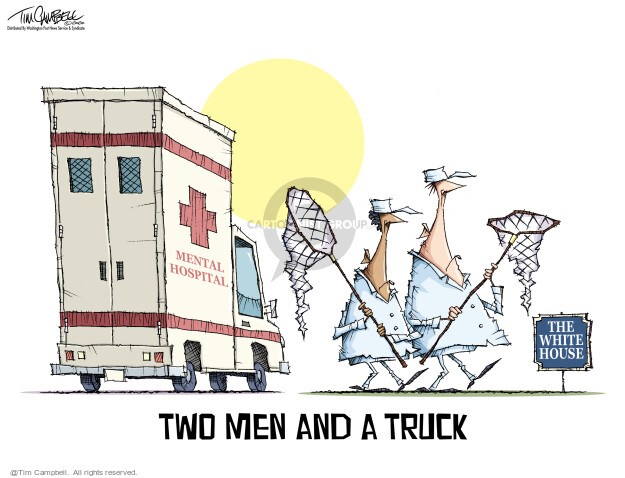 Tim Campbell  Tom Campbell Editorial Cartoons 2020-11-13 election