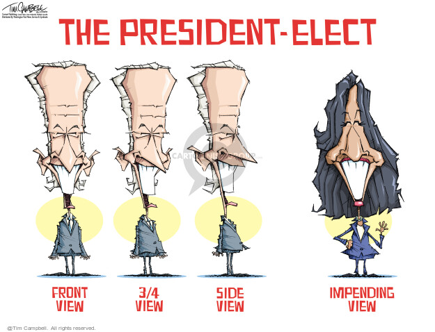Tim Campbell  Tom Campbell Editorial Cartoons 2020-11-17 Joe