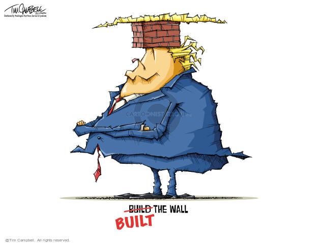 Tim Campbell  Tom Campbell Editorial Cartoons 2020-11-18 Presidency