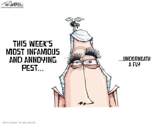 Tim Campbell  Tom Campbell Editorial Cartoons 2020-10-09 election