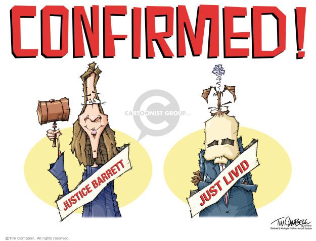 Tim Campbell  Tom Campbell Editorial Cartoons 2020-10-28 democrat