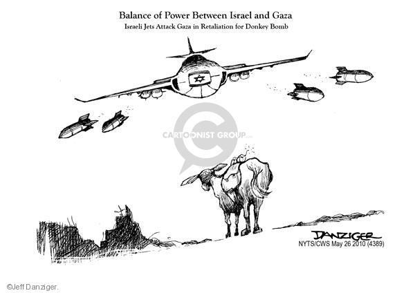 Cartoonist Jeff Danziger  Jeff Danziger's Editorial Cartoons 2010-05-26 Israel