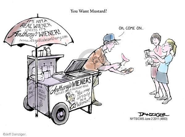 Cartoonist Jeff Danziger  Jeff Danziger's Editorial Cartoons 2011-06-02 congressman