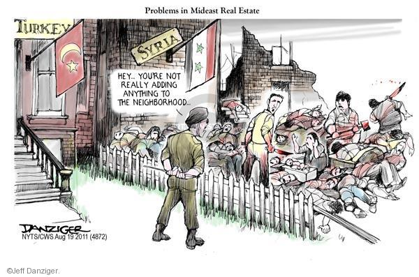 Jeff Danziger  Jeff Danziger's Editorial Cartoons 2011-08-17 real estate