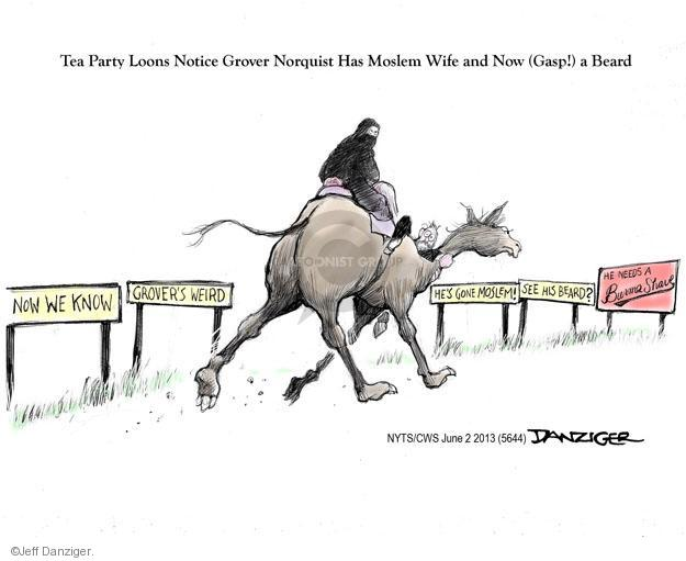 Cartoonist Jeff Danziger  Jeff Danziger's Editorial Cartoons 2013-06-02 tea party
