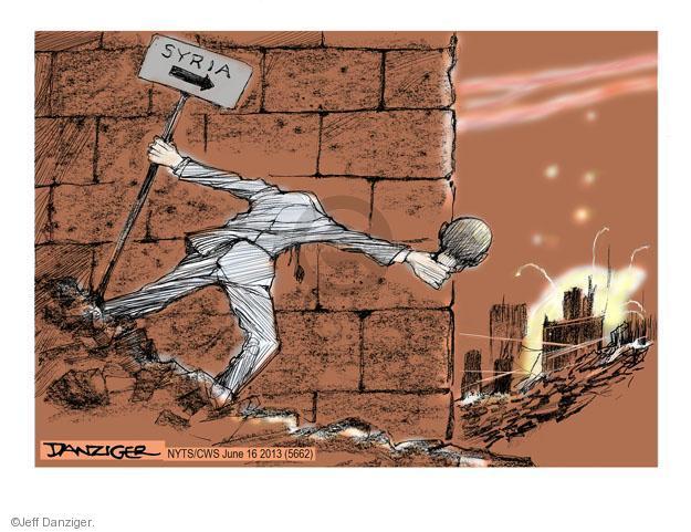 Jeff Danziger  Jeff Danziger's Editorial Cartoons 2013-06-16 America