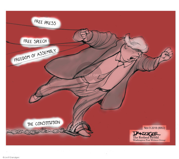 Jeff Danziger  Jeff Danziger's Editorial Cartoons 2018-11-11 freedom of the press