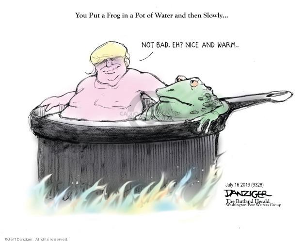 Jeff Danziger  Jeff Danziger's Editorial Cartoons 2019-07-16 Trump administration