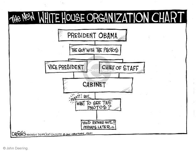 The new White House organization chart.  President Obama.  The guy with the photos.  Vice President.  Chief of Staff.  Cabinet.  Psst!  Hey ... Want to see the photos?  Youd rather not?  Perhaps later.