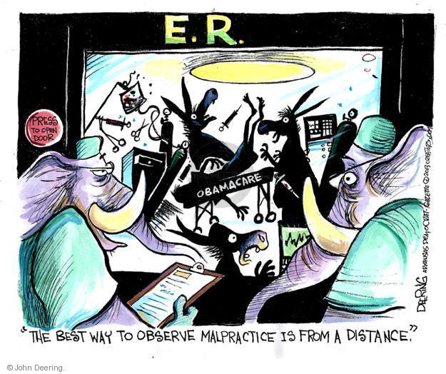 John Deering  John Deering's Editorial Cartoons 2013-07-17 policy