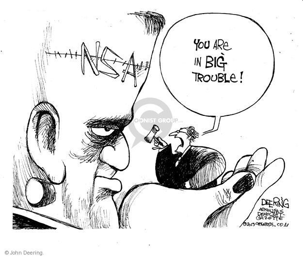 John Deering  John Deering's Editorial Cartoons 2013-12-18 court