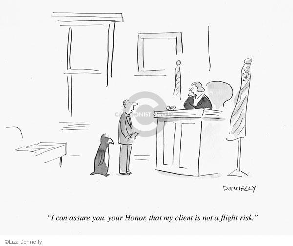 I can assure you, your Honor, that my client is not a flight risk.