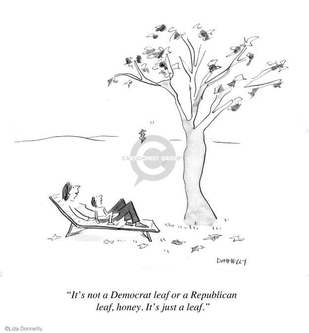 Its not a Democrat leaf or a Republican leaf, honey. Its just a leaf.