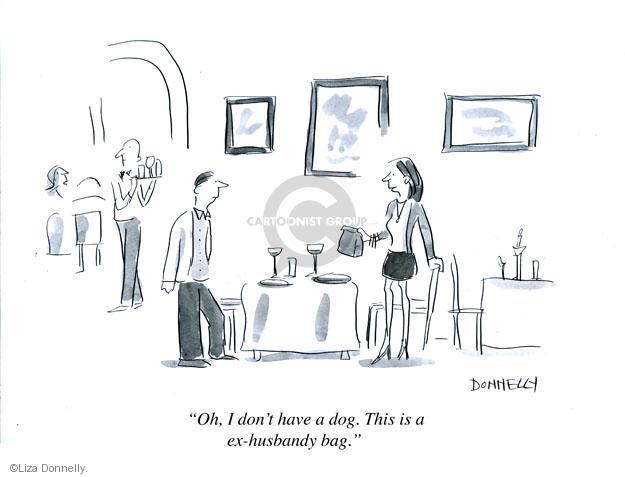 Cartoonist Liza Donnelly  Liza Donnelly's Panel Cartoons 2013-02-13 divorce