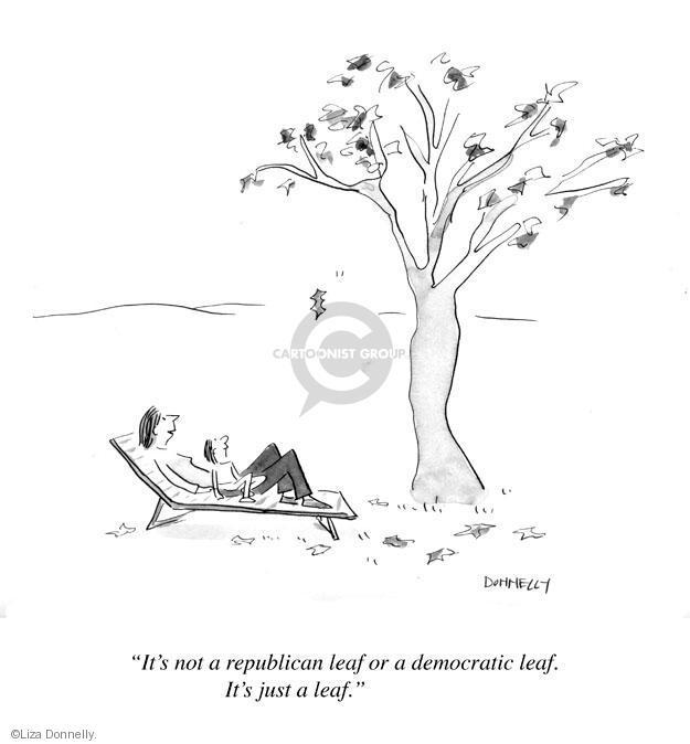 Its not a republican leaf or a democratic leaf. Its just a leaf.