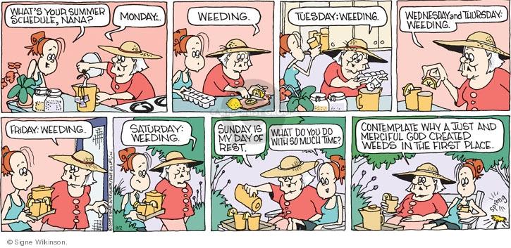 Comic Strip Signe Wilkinson  Family Tree 2009-08-02 Saturday
