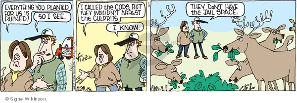 Comic Strip Signe Wilkinson  Family Tree 2009-12-07 landscaper