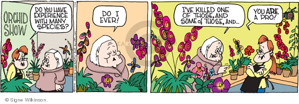 Comic Strip Signe Wilkinson  Family Tree 2010-01-14 flower show