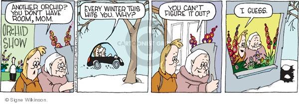 Comic Strip Signe Wilkinson  Family Tree 2010-01-16 outdoors