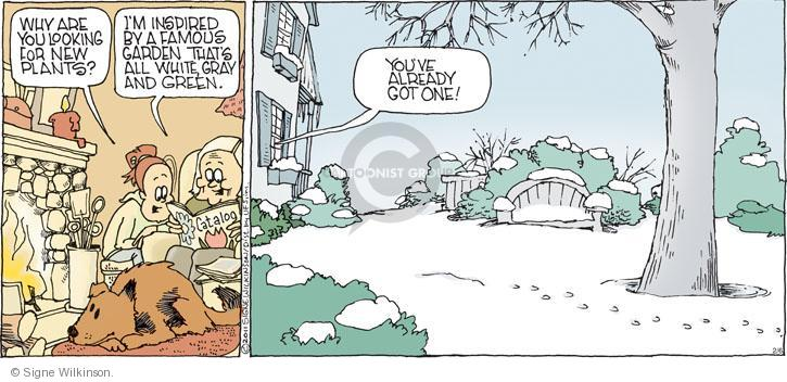 Comic Strip Signe Wilkinson  Family Tree 2011-02-06 why